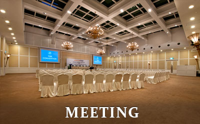 RCD-Meeting