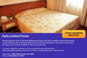<h3>Daily Limited Promo</h3>