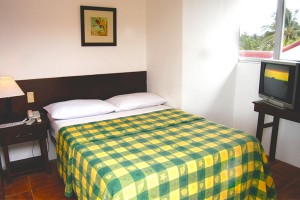 Standard Room Single Bed With Courtyard View