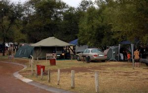 Camp Sites (electrified)